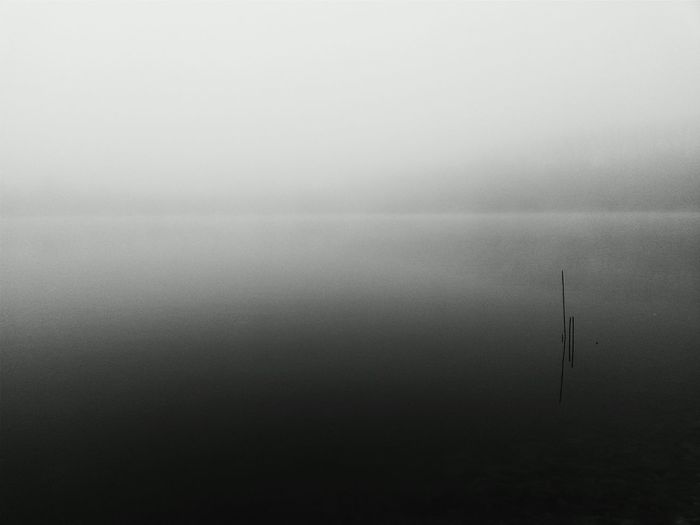 Scenic view of foggy weather