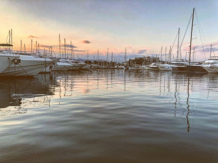 Antibes France PACA Côte D'Azur Water Sky Reflection No People Nature Tranquility Lake Waterfront Scenics - Nature Beauty In Nature Tranquil Scene Day Sunset Outdoors Cloud - Sky Rippled Plant Transportation Idyllic