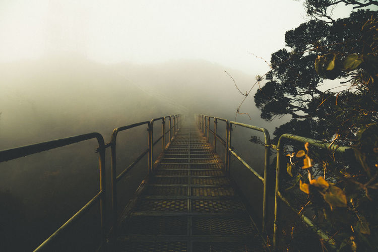 Staircase amidst trees against sky during foggy weather