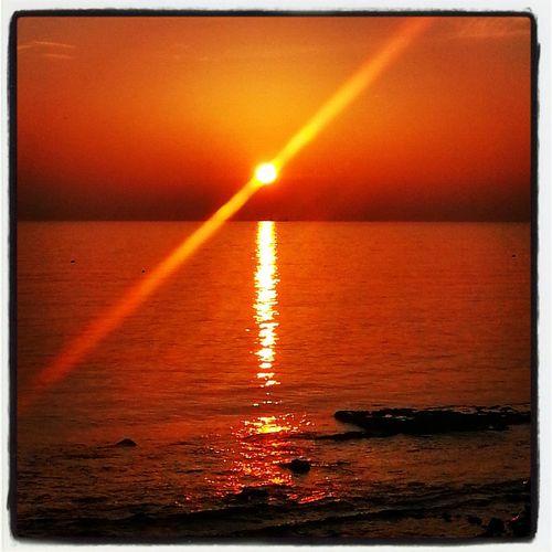 Sunset Sun_collection, Sky_collection, Cloudporn, Skyporn Sky Collection Sea Life Enjoying Life EyeEm Nature Lover EyeEm Best Shots Eye4photography  Sunrise Enjoying The Sun