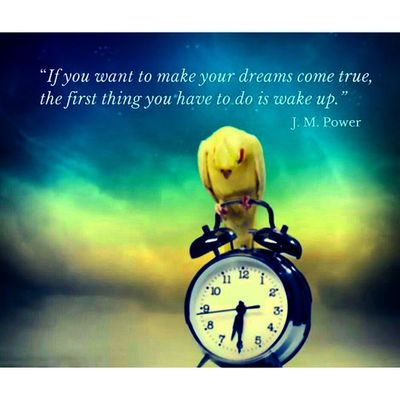 """""""If you want your Dreams come true the first thing you have to do is wake up."""" Rise & Shine Dosomething Quote ."""