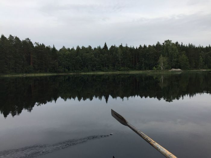 Early evening on a small lake in Sweden. Nature Reflection Beauty In Nature IPhone 6+