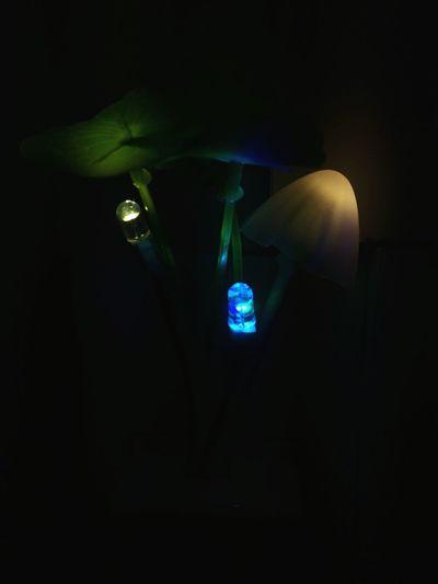Illuminated lamp against blue background