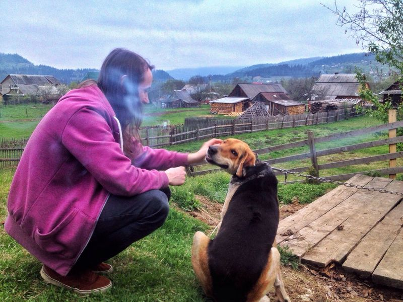 Man and the dog. One Animal Animal Themes Domestic Animals Mammal Livestock Mountain Dogs Day Pets Grass Real People Casual Clothing Dog One Person Field Outdoors Full Length Leisure Activity Happiness Built Structure Karpathian