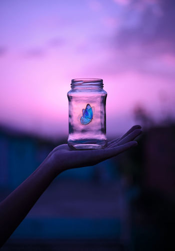 Butterfly trapped in a glass jar against  sunset