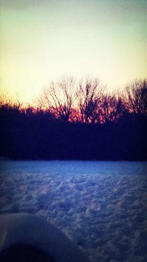 Winter Sunsetsky