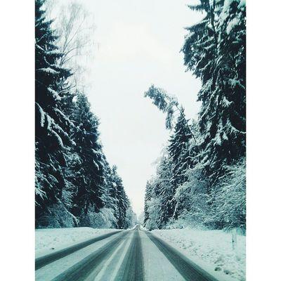 Snow in the Woods ❄❄ Winter Eichtätt Neuburg School Weekend Snowing Cold Ice White Weather Frosty Nature Instawinter Instasnow Snowfall