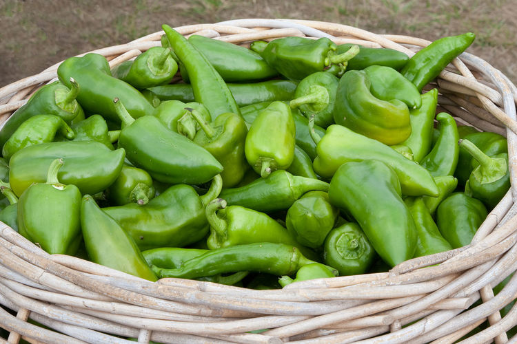 High angle view of green bell peppers in basket