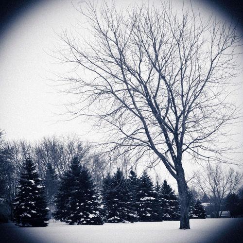 Cold Days