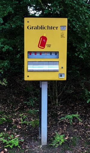Grablichtautomat auf dem Friedhof in Worms Candle Cemetery Friedhof Mourning Religion And Tradition Tranquility Trauer Verkaufsautomat Close-up Communication Day Gelb Grablichter Nature No People Outdoors Text Tree Vending Machine Worms Yellow