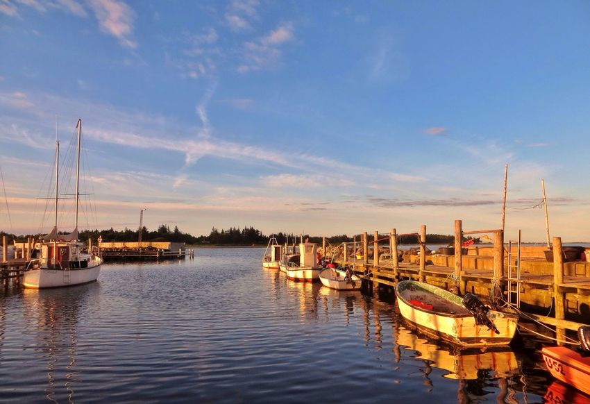 Evening by the Marina. ☀️ EyeEm Tadaa Community Enjoying Nature Denmark Sunlight