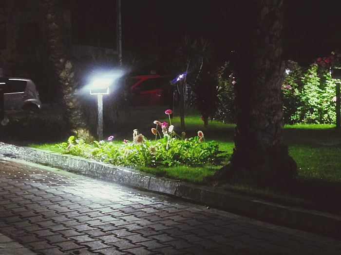 Relaxing Lovely Weather Enjoying Life Check This Out Randomness Hanging Out Taking Photos Night Nightphotography