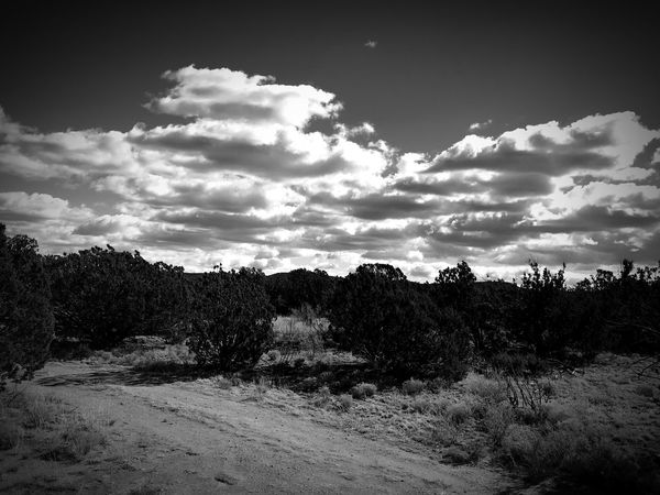 """A Road Less Traveled Under The Clouds"" New Mexico Photography New Mexico Skies New Mexico Clouds And Sky Clouds Dirt Road Black And White Photography Black & White Blackandwhite Nature Sky Scenics Cloud - Sky No People Landscape"