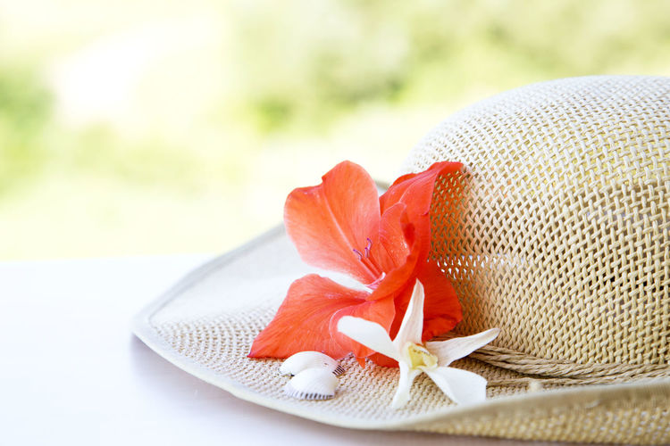 Close-up of flower on cropped hat