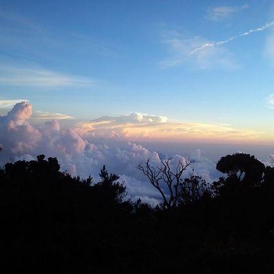 Sunset view from laban rata. Gunungkinabalu