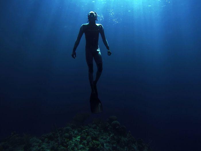freediving~