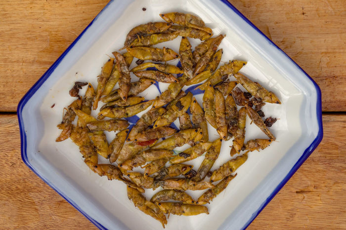Food And Drink Grasshoppers Crickets Local Delicacy Edible Insects Insects  Uganda  Ugandan Delicacies Exotic Food Sustainability Protein Africa African Food Unusual Healthy Eating Health Food BizzareFoods Superfood