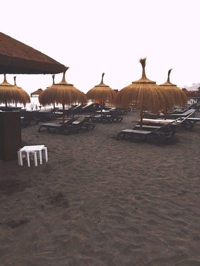 Beach Sun Lounger Relaxation Summer