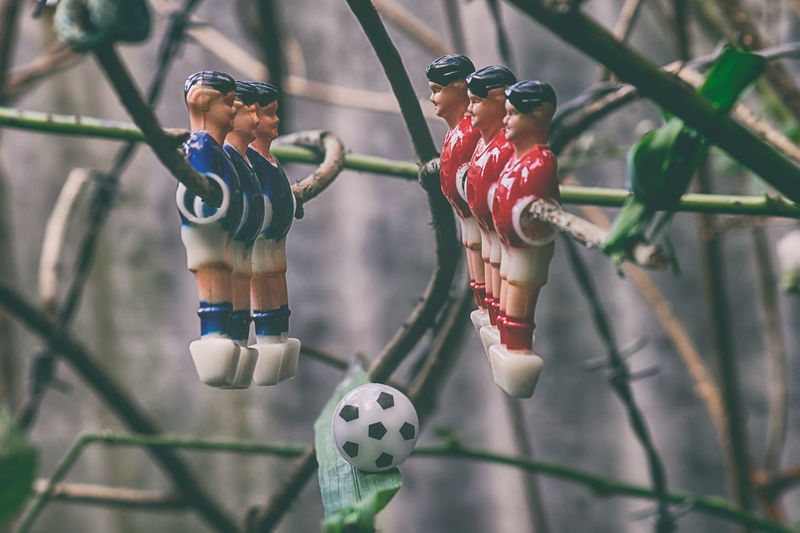 Close-up of figurines on plant