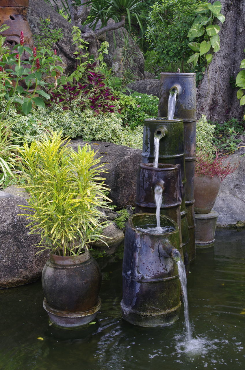 STATUE AMIDST PLANTS AGAINST WATER