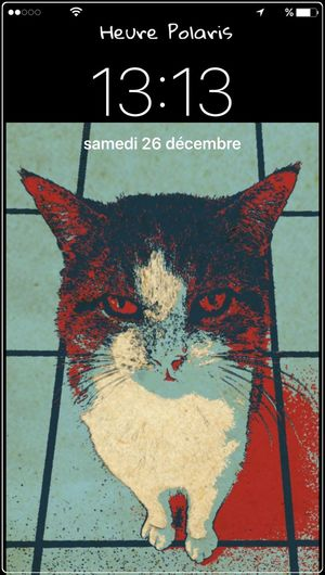 13H13 MIMINE a aimé la pintade 😸😽😋 HEURE POLARIS Mon Ami Le Chat THESE Are My Friends Chat Cat Cat♡ Cat😻 Chat😻