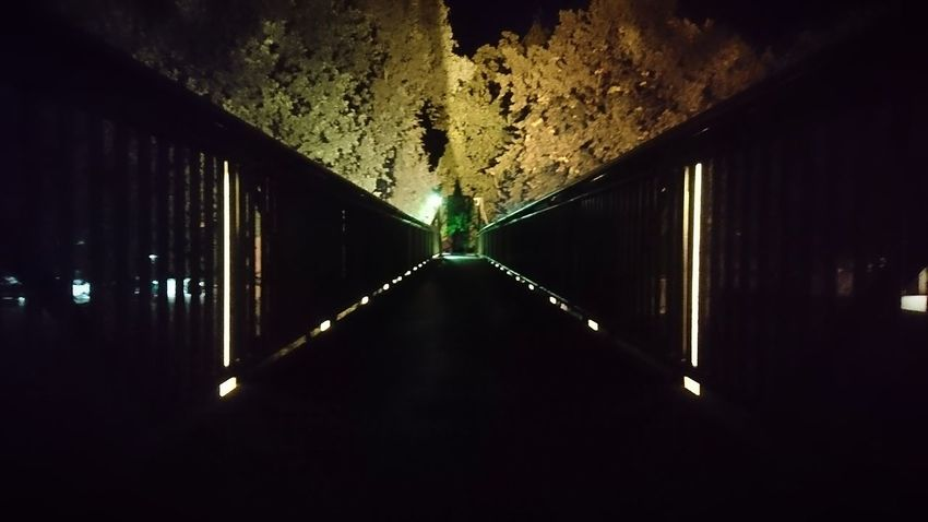 The bridge. Meppen Germany Emsland Bridge Bridges Ahead Darkness The Way Forward Night Night Photography Night Lights Artificial Lighting Horizon Mystery Obscure Symmetry Architecture Built Structure