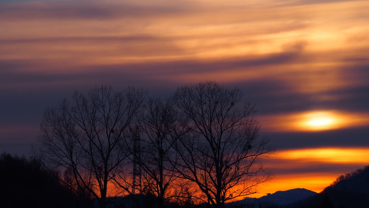 sunset, orange color, bare tree, beauty in nature, scenics, nature, sky, silhouette, tranquility, tranquil scene, cloud - sky, tree, outdoors, low angle view, no people, landscape, branch, day