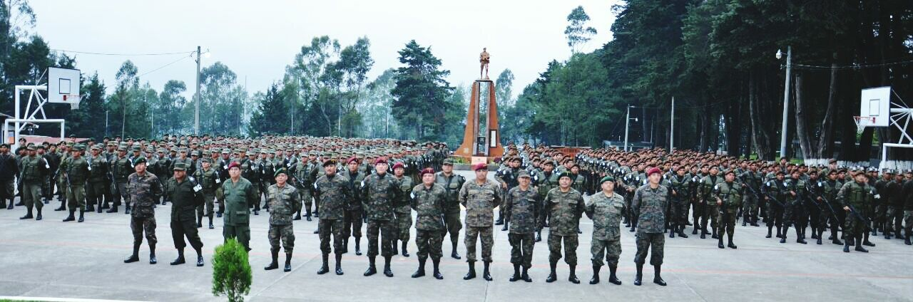 large group of people, tree, outdoors, day, real people, men, army soldier, nature, people