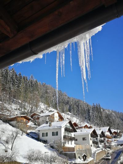 Icicle Ice Snow Icycles Blue Sky Forest Alto Adige Italy Südtirol South Tyrol Wood - Material Mountain Snow Clear Sky Cold Temperature Winter Blue Tree House Snowcapped Mountain TOWNSCAPE Rooftop Residential Structure Pinaceae Village Town Hut Housing Settlement Exterior Human Settlement