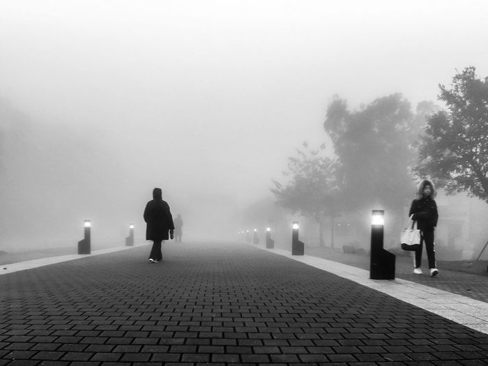 Blackandwhite Blackandwhite Photography Footpath Iphonephotography Outdoors Real People Rear View Road Street Streetphotography Walking IPS2016People