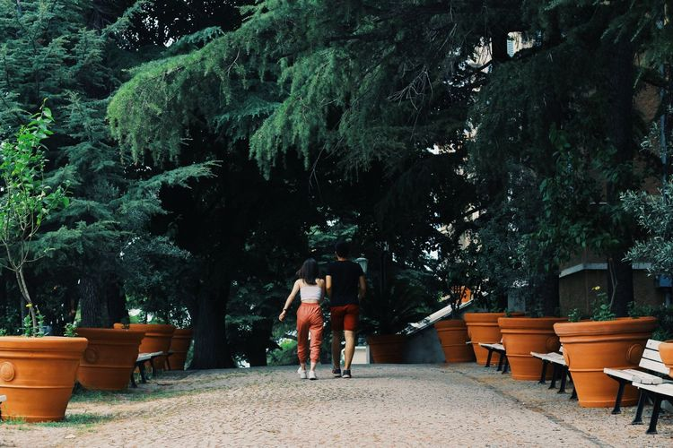 Rear view of couple walking at park