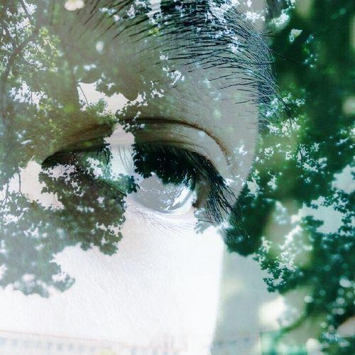 Boyfriend's Eyes