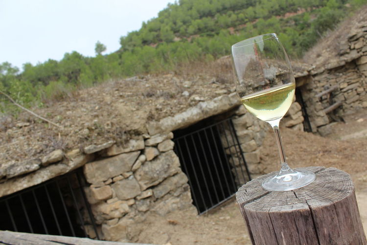 Really special excursion. http://www.raconets.com/es/2017/11/tinas/ Nature Walking Wine Barcelona Catalunya History Culture Special Excursion Raconets Drink Drinking Glass Outdoors Day Wineglass Tree Silence Quiet Places Enjoy Beautiful Loveit Special Moment Surprise Lovely
