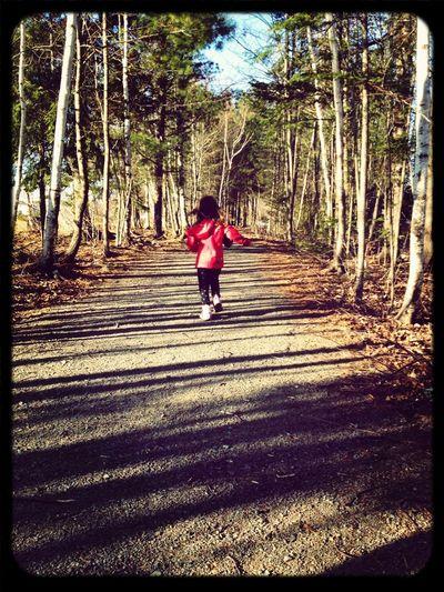 A Run Through The Woods