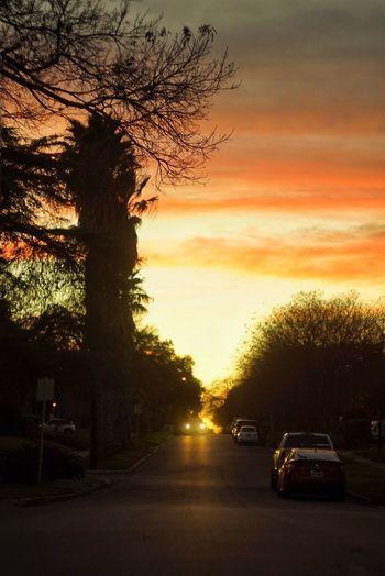 Sunset Car Mode