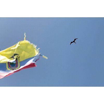 Ecuador AllYouNeedIsEcuador Libertad Freedom Galapagos Canonecuador Canon Canon_official Fotografosecuador