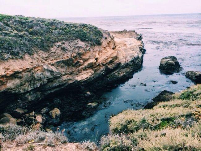 Point Lobos, California. Pointlobos Pointlobosstatereserve California USA USAtrip Roadtrip Nature Hiking