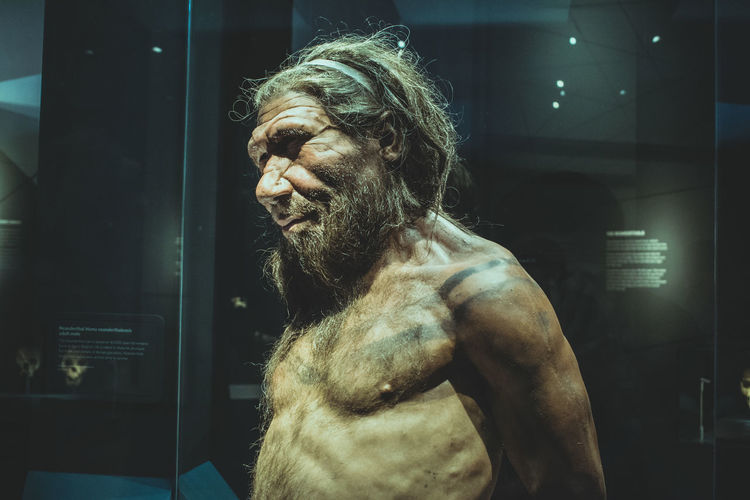Adult Beard Chest Contemplation Facial Hair Hair Hairstyle History Indoors  Leisure Activity Lifestyles Looking Looking Away Mid Adult Neanderthal One Person Prehistoric Profile View Real People Shirtless Side View Standing Waist Up Young Adult Young Men