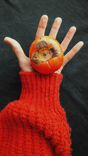 High angle view of hand holding orange