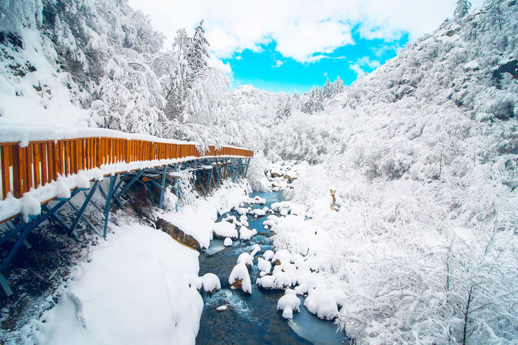 View of footbridge over snow covered land during winter