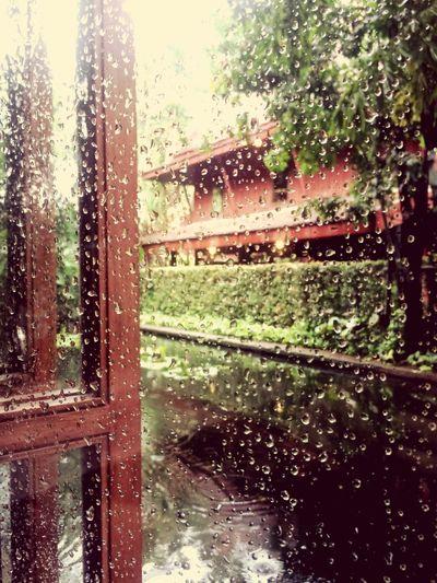 Thailand Rain Raindrops Rainy Days Bangkok
