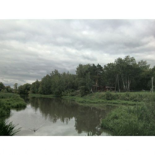 река Яуза мытищи осень гуляю