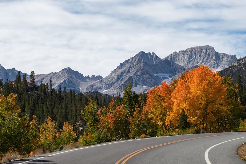 Stunning view from a High Sierra road. Tree Road Sky Mountain Plant Beauty In Nature Cloud - Sky Scenics - Nature Mountain Range Autumn Nature Transportation Tranquility No People Symbol Landscape Day Road Marking Growth Winter