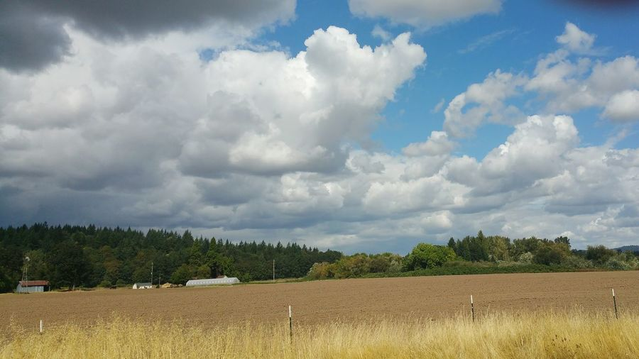 Oregon Farmland