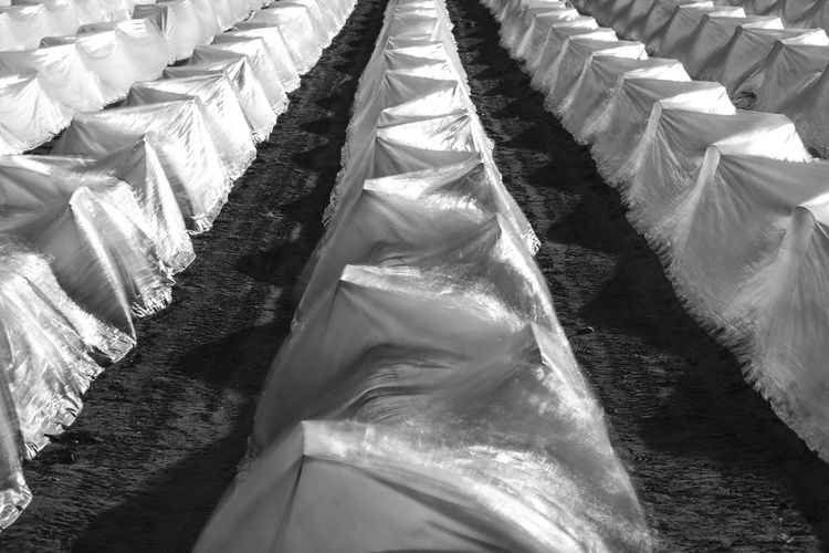 High Angle View Of Fabric Covers At Farm