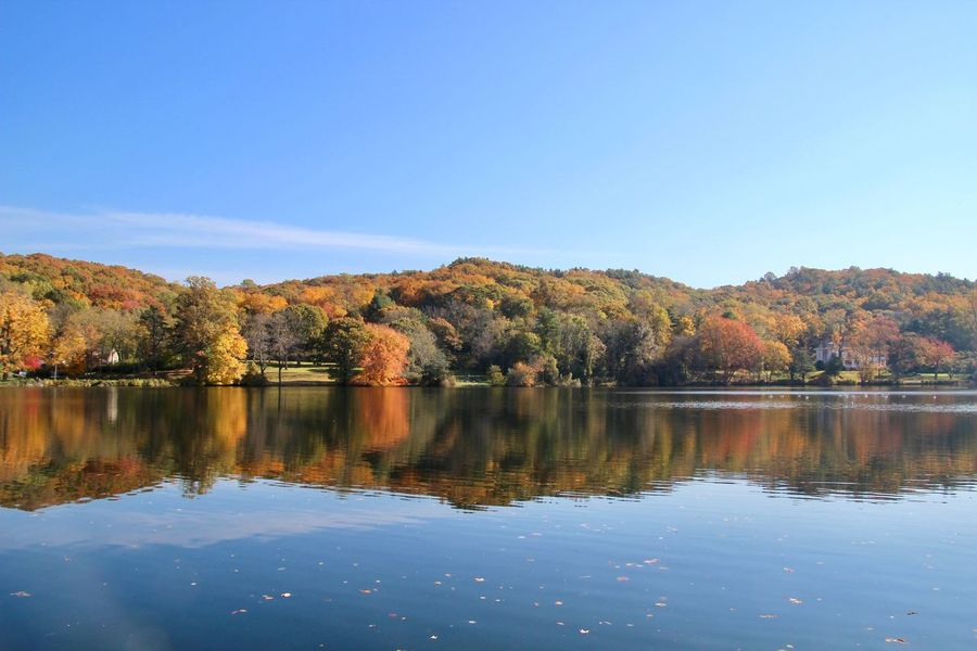 Landscape autumn in New York multicolored trees blue skies water reflections beauty in nature mirror images EyeEm nature lover Tranquility Scenics - Nature Tranquil Scene No People