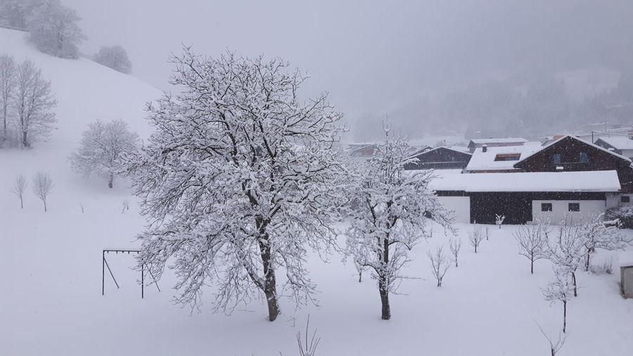 Snow Cold Temperature Winter Architecture
