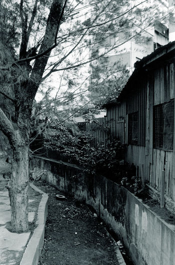Black & White Architecture Black And White Black And White Photography Black&white Blackandwhite Blackandwhite Photography Blackandwhitephotography Building Exterior Built Structure Canal Day Drainage Drainage Channel Drainage Ditch Nature No People Outdoors Street Street Photography Streetphotography The Way Forward Tree