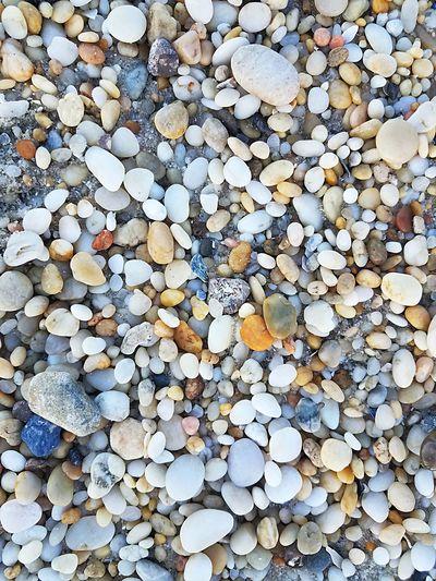 Pebble Shells