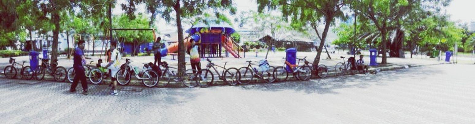 Panaroma Ride Cyling Bicycle